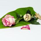 Masełko kąpielowe Róże