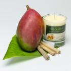 Świeca sojowa Mango